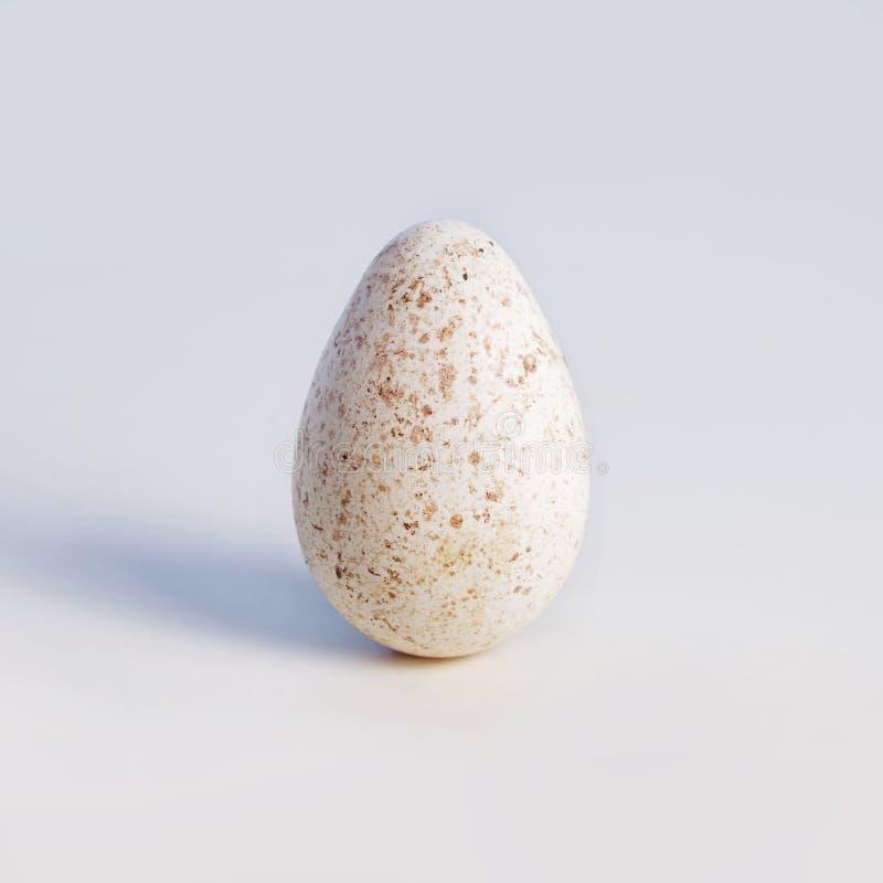 Ein Weiß beschmutztes Truthahnei lizenzfreies stockfoto