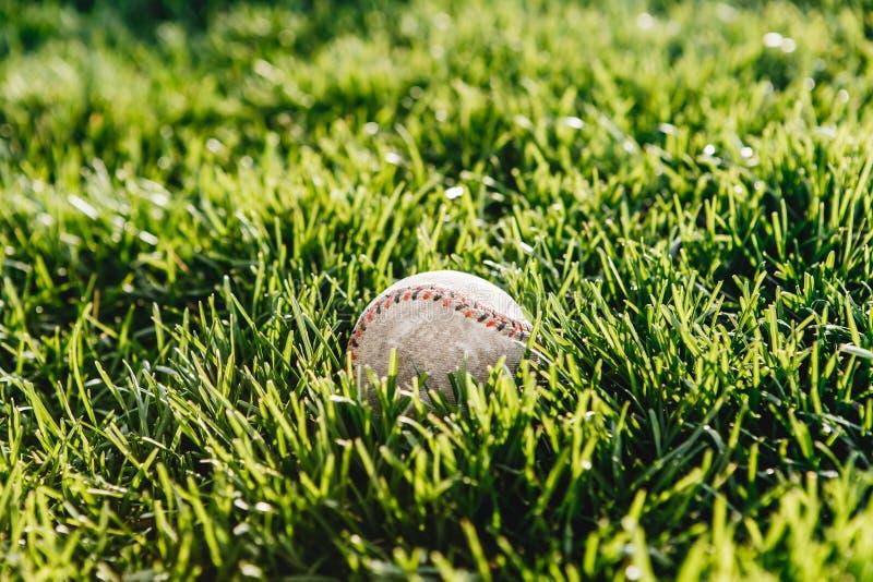 Ein Weiß verwendete Baseball auf dem frischen grünen Gras lizenzfreie stockbilder
