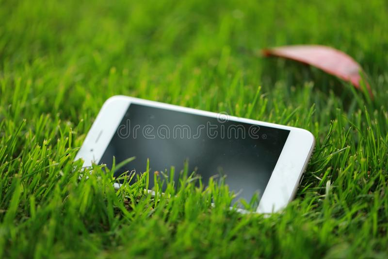 Ein weißes intelligentes Telefonmobiltelefon auf Rasen des grünen Grases im Sommerfrühlings-Parkgarten am sonnigen Tag stockfotografie