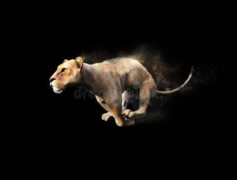 Ein weiblicher bewegender und laufender Löwe vektor abbildung