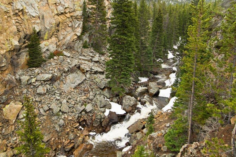 Ein wilder Nebenfluss in den felsigen Bergen lizenzfreies stockfoto
