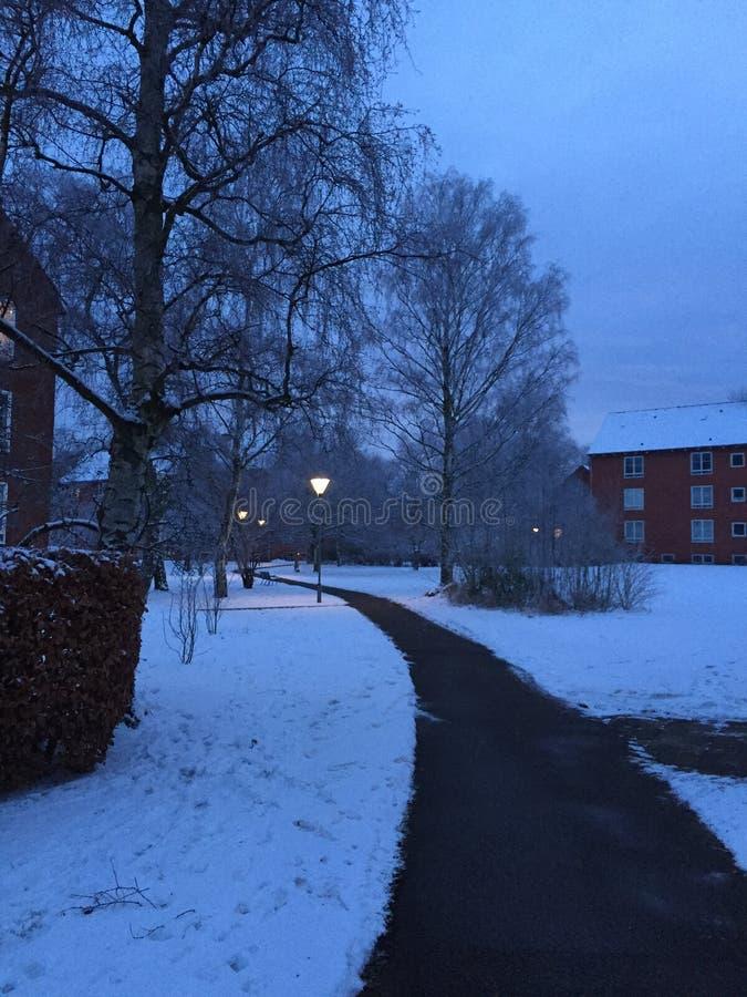 Ein Winter-Morgen lizenzfreies stockbild