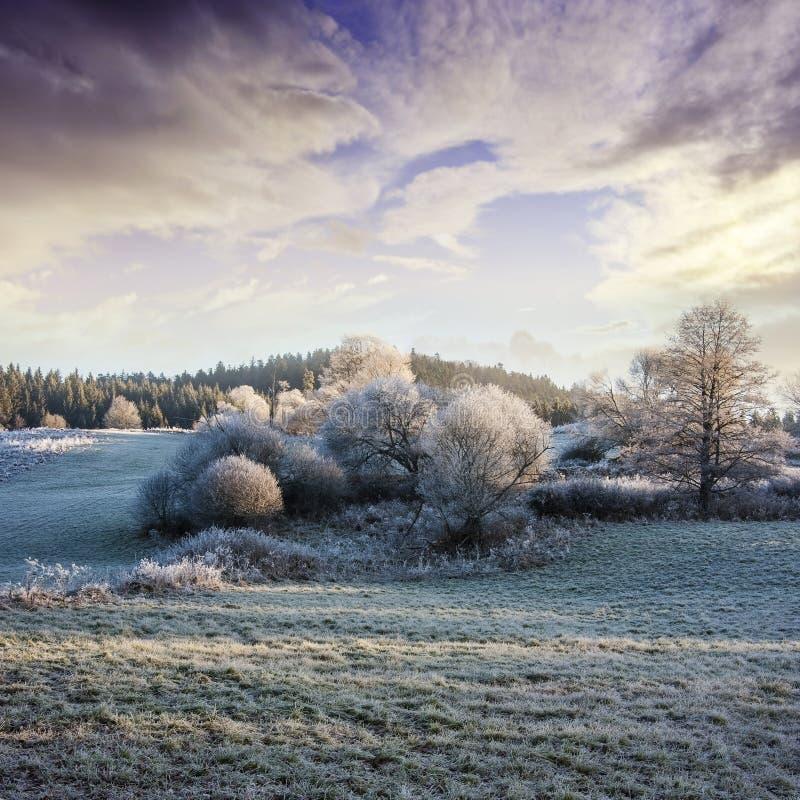 Ein Wintermorgen mit einem schönen Sonnenaufgang stockfotos