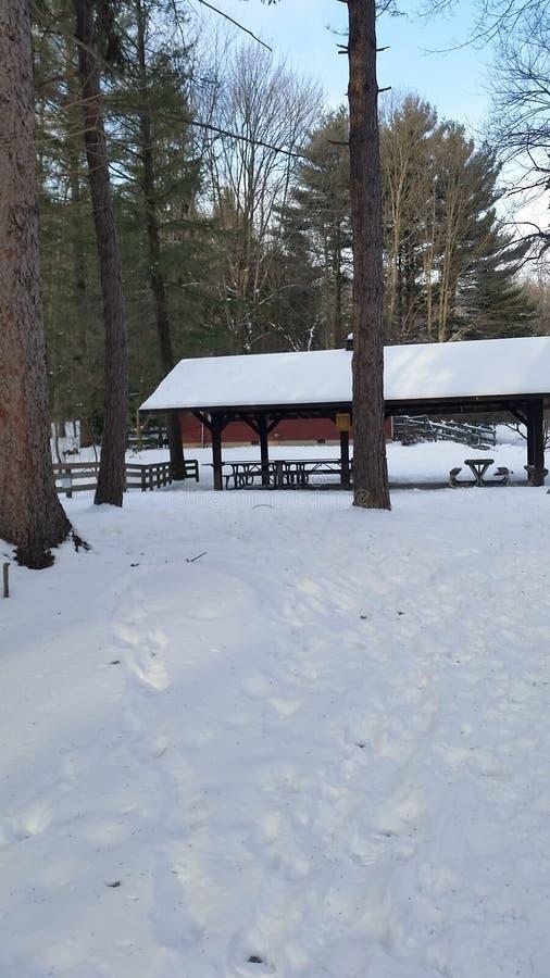 Ein Winterpicknick lizenzfreie stockfotos
