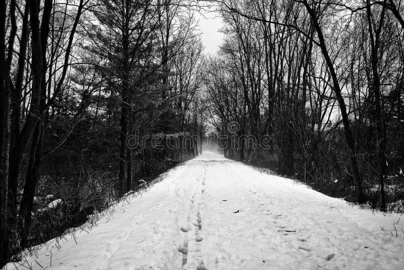 Ein Winterweg stockbilder