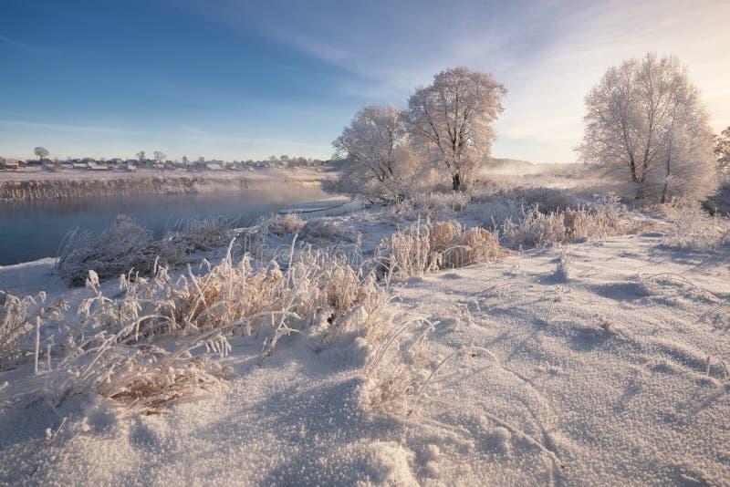 Ein wirklicher russischer Winter Weißer Schnee und Reif Morgen-Frosty Winter Landscape With Dazzlings, Fluss und gesättigter blau lizenzfreie stockfotografie