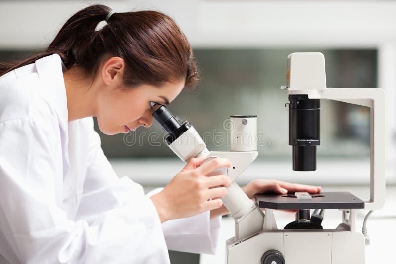 Ein Wissenschaftskursteilnehmer, der in einem Mikroskop schaut lizenzfreies stockfoto
