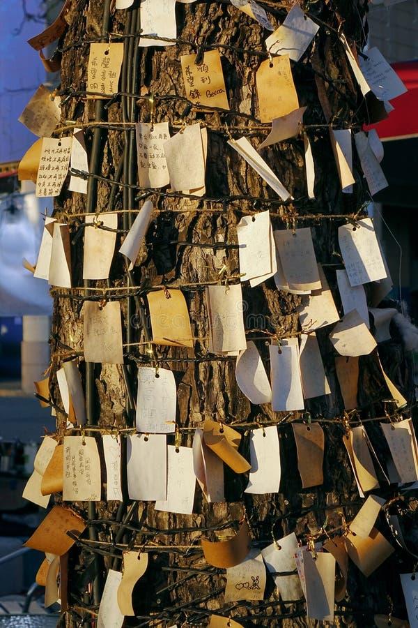 Ein Wunschbaum mit vielen Anträge stockfoto