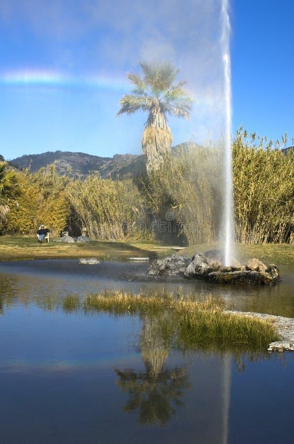 Ein Zuschauer unter einem Regenbogen passt alten zuverlässigen Geysir auf, Wasser in St. Helena, CA zu spucken lizenzfreies stockfoto
