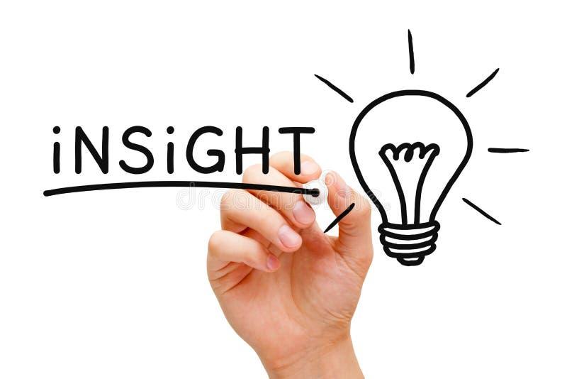 Einblick-Glühlampe-Konzept lizenzfreies stockbild