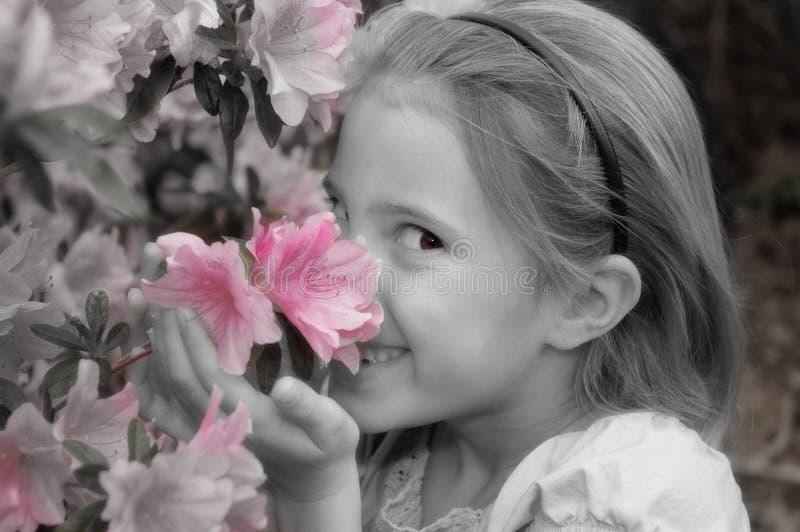 Einde om de bloemen te ruiken stock afbeelding