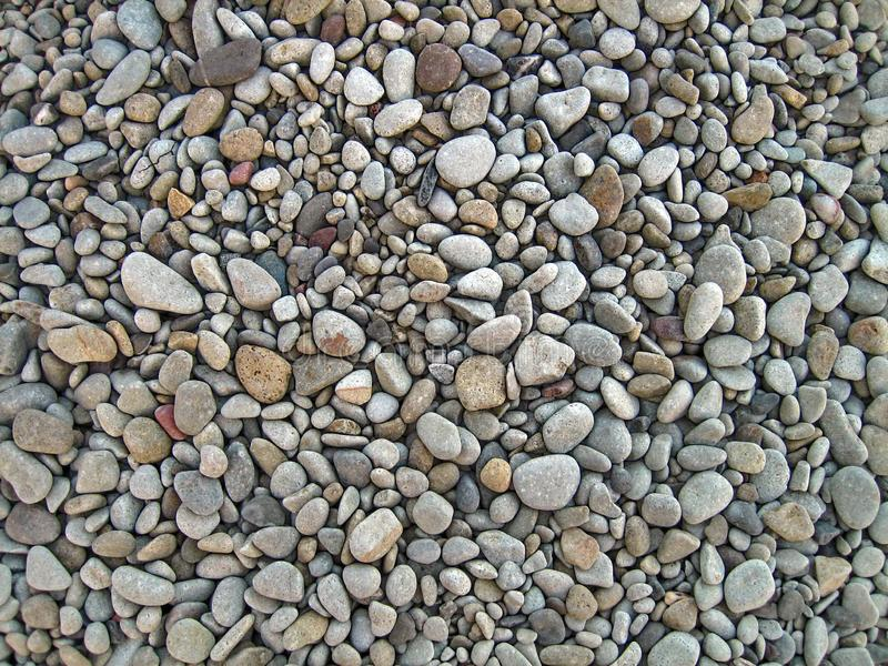 Eindeloze droge overzeese kiezelstenen, textuur, achtergrond Grijze kiezelstenen, klein, ovaal stock afbeelding
