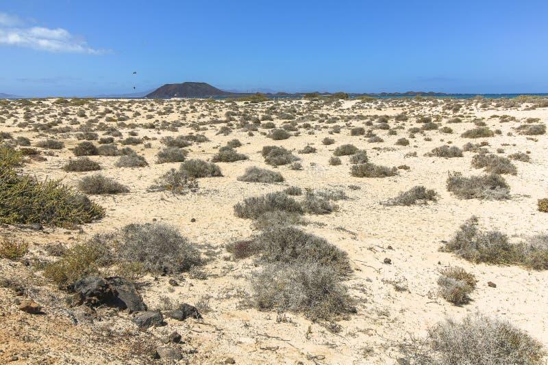 Eindeloze en brede zandduinen, Dunas DE Corralejo, Fuerteventura royalty-vrije stock fotografie