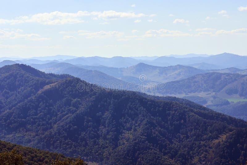 Eindeloze uitgestrektheid De Kaukasus Groene Forest Blue-hemel royalty-vrije stock afbeelding