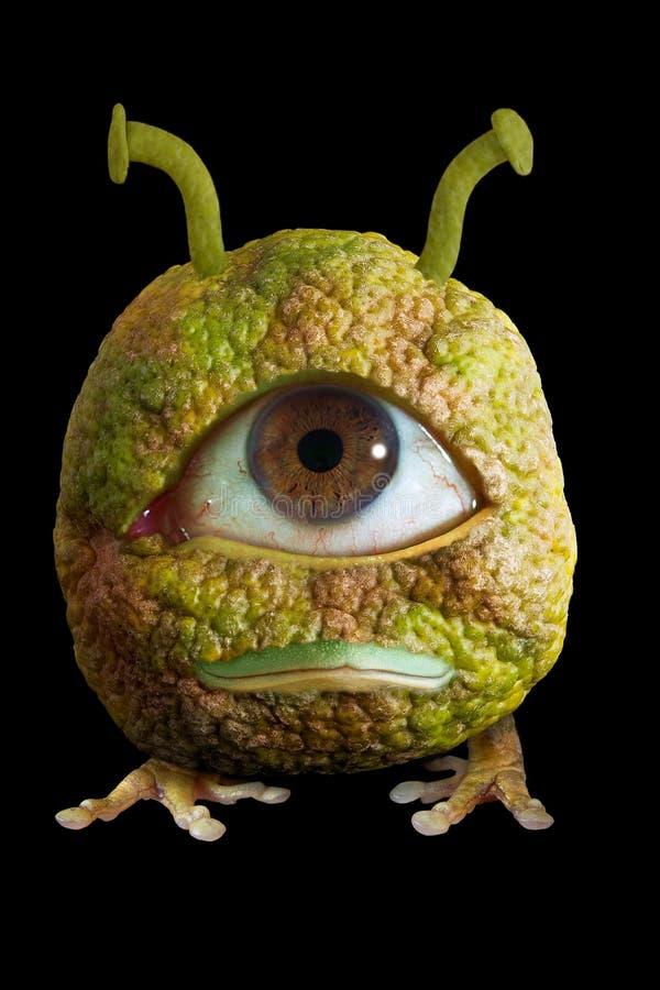 Eindeutige Frucht stockbild