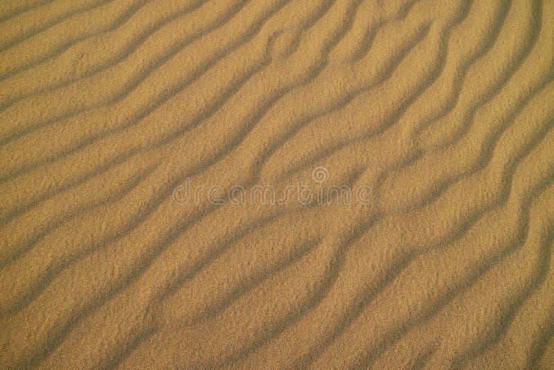 Eindrucksvolles Sandkräuselungsmuster auf der Sanddüne von Huacachina-Wüste, Ica, Peru lizenzfreies stockbild