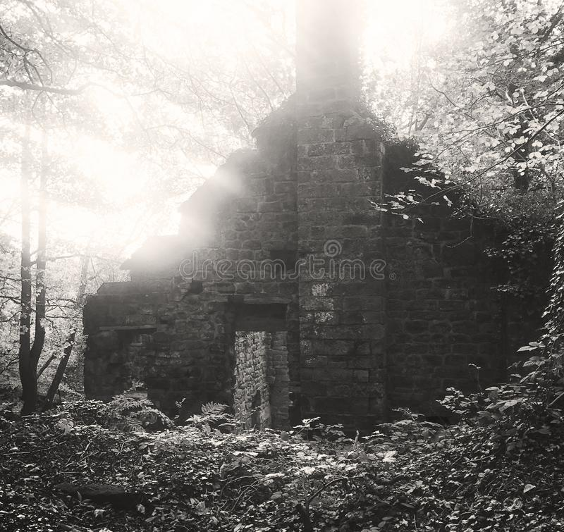 Eine alte aufgegebene Mühle, die im Wald errichtet stockfotos