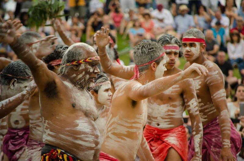 Eine alte Gewohnheit unter einheimischem Australier ` WugulOra-` Zeremonie-Bedeutung 'One Mob' lizenzfreie stockfotografie