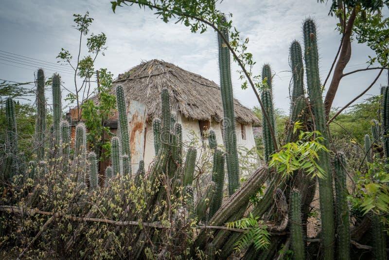 Eine alte Sklavenhütte - Kaktuszaun Curacao Views stockbilder