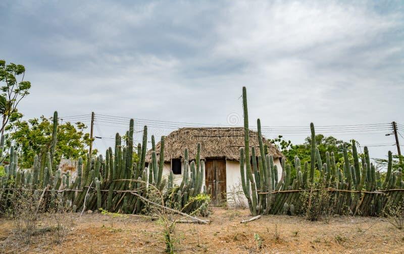Eine alte Sklavenhütte - Kaktuszaun Curacao Views stockfotos