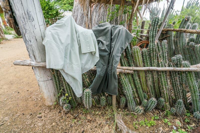 Eine alte Sklavenhütte - Kaktuszaun mit dem Waschen auf ihm lizenzfreies stockbild
