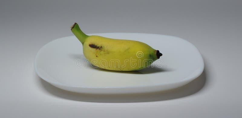 Eine angebaute Banane stockfotografie