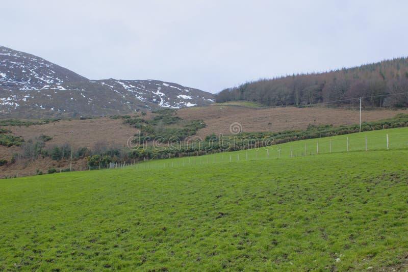 Eine Ansicht über eins von den vielen Schnee überstieg Hügel und Täler der Mourne-Berge in der Grafschaft unten in Nordirland auf lizenzfreie stockfotografie