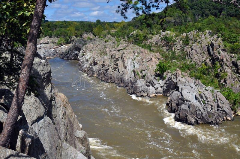 Eine Ansicht der Fluss-Schlucht an Great Falls-Park in Virginia stockfotografie