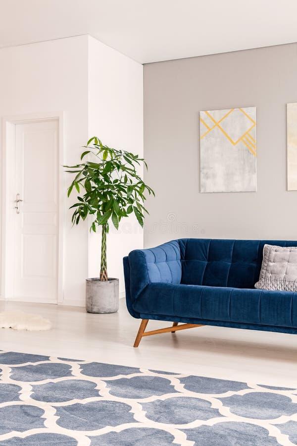 Eine Ansicht an einer Innentür durch einen hellen und minimalen Aufenthaltsrauminnenraum mit einem bequemen dunkelblauen Sofa, da stockbild