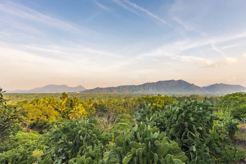 Eine Ansicht vom Dambulla-Höhlen-Tempel, Sri Lanka lizenzfreie stockfotos