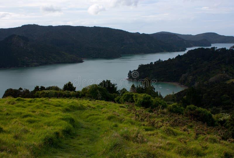 Eine Ansicht an von einem Hügel das Meer und Bäume und an von einem Weg, die unten in Neuseeland führt lizenzfreies stockbild
