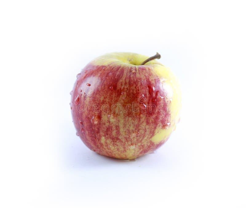Eine Apfelfrucht über weißem Hintergrund stockbild