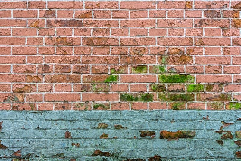 Eine Backsteinmauer mit Schalenfarbe kann eine unansehnliche Verwirrung in sein ho lizenzfreies stockfoto