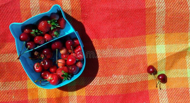 Eine blaue Brotdose mit Kirschen und Erdbeeren auf dem hellen roten Plaid auf dem Strand stockbilder