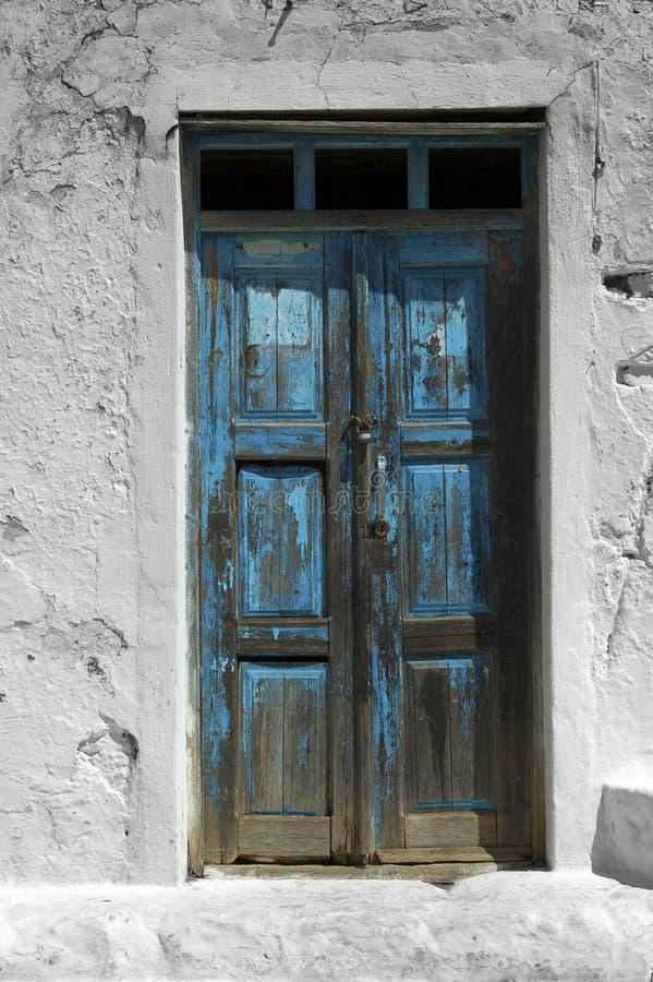Eine blaue Tür hinter Grünpflanzen lizenzfreie stockfotografie