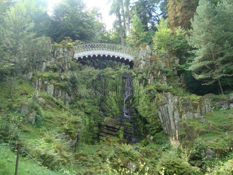 Eine Brücke im Wald stockbild