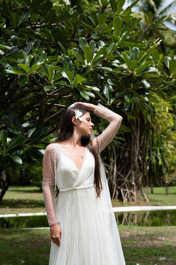 Eine Braut in einem weißen Kleid mit einer exotischen Blume in ihrem Haar steht unter einem blühenden tropischen Baum stockbilder