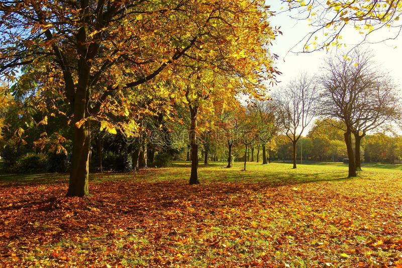 Eine bunte Herbstlandschaft stockfoto