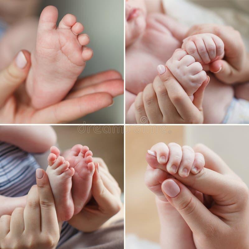 Eine Collage von vier Fotos, Babyhände und Fuß und Handmutter lizenzfreies stockbild