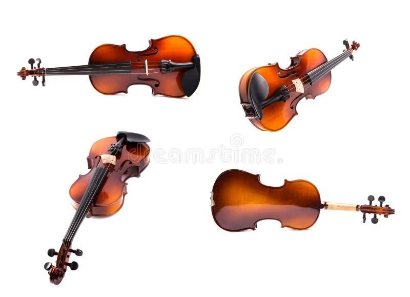 Eine Collage von Violinen in der verschiedenen Projektion stockbild