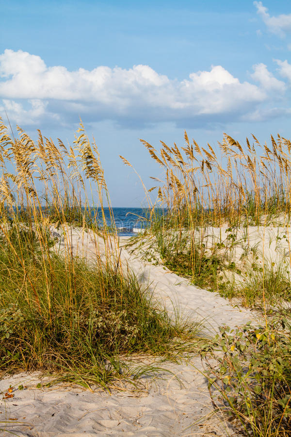 Eine Düne-Bahn zum Strand. lizenzfreies stockfoto