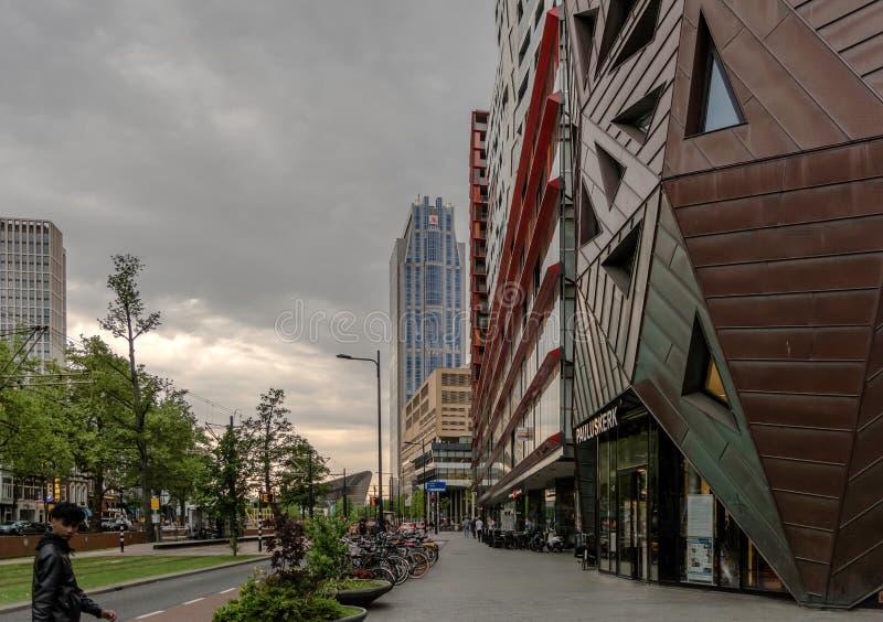 Eine der Rotterdam-Straßen stockfotos