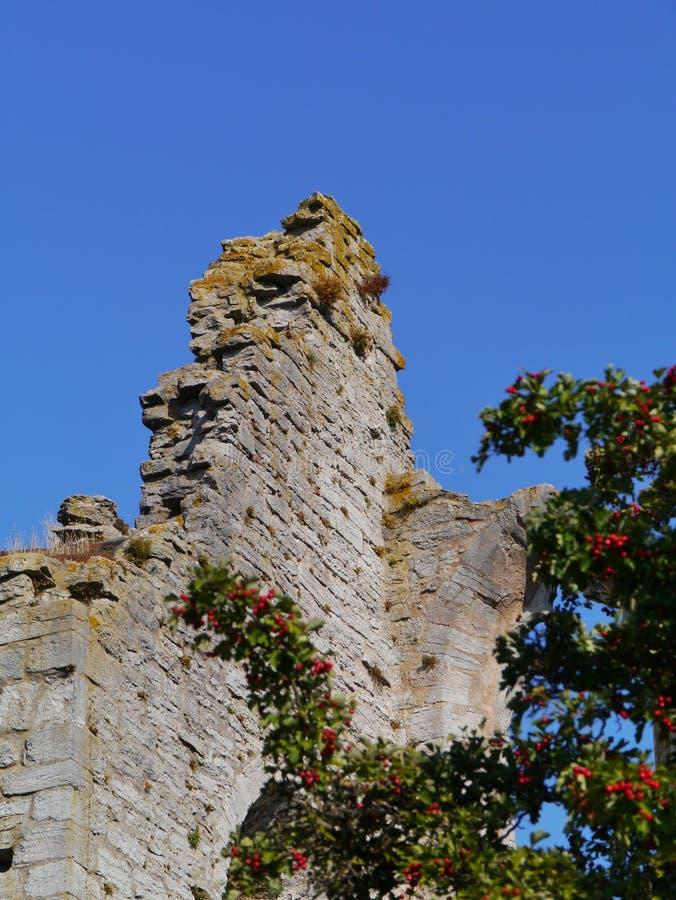 Eine der Ruinen von Visby auf Gotland lizenzfreies stockbild