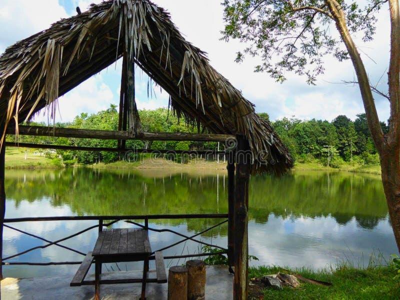 eine Dschungelhütte auf einem Teich lizenzfreie stockfotografie