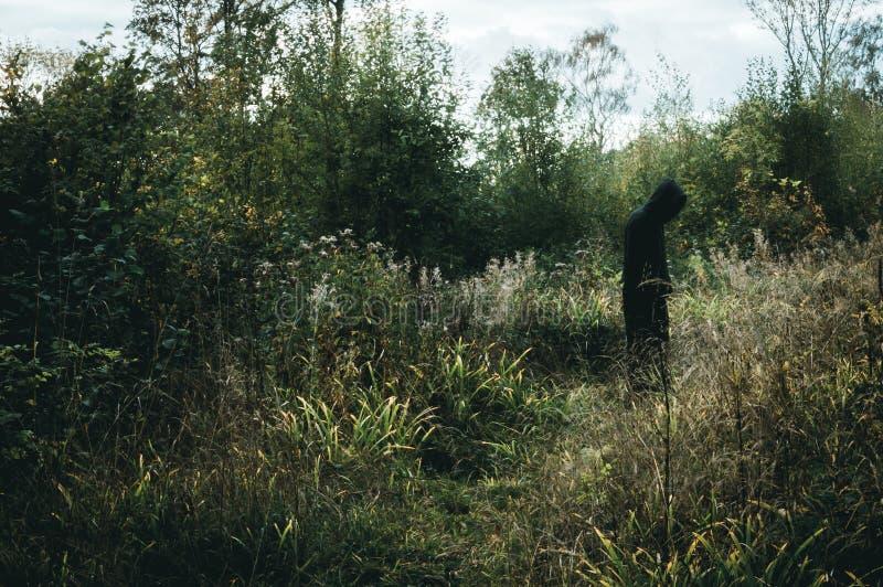 Eine dunkle, gespenstische mit Kapuze Zahl, stehend im Waldland, mit gedämpft redigieren lizenzfreie stockfotos