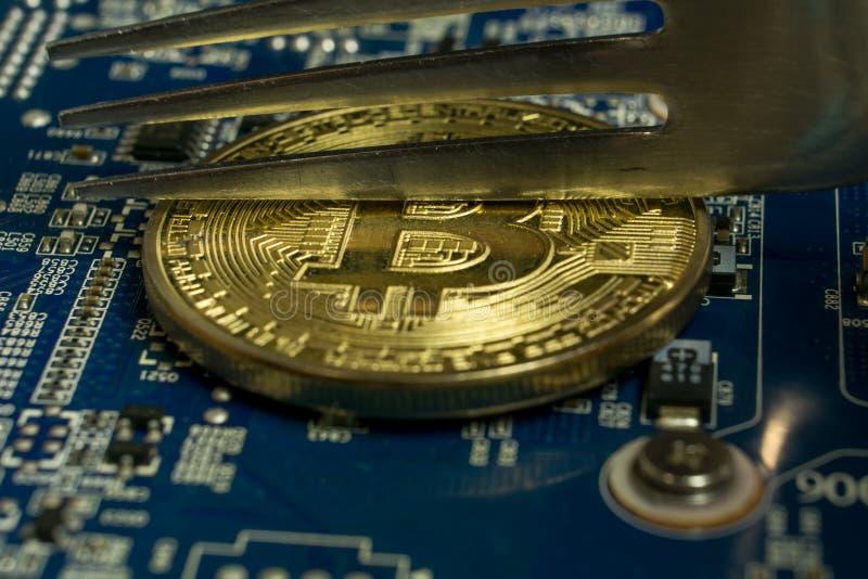 Eine einzelne Bitcoin-Münze auf dem blauen Computermotherboard und -gabel, die zur Hälfte sie versuchen stockfoto