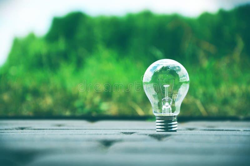 Eine einzelne Lampe in der Natur lizenzfreie stockfotografie