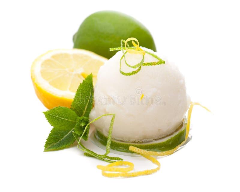 Eine einzelne Schaufel der ZitronenEiscreme mit Zitronen und der Dekoration im weißen Hintergrund lizenzfreie stockbilder