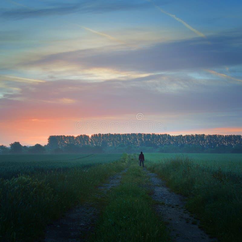 Eine einzige Zahl auf einem Landweg, der das erste nebelhafte Licht des Sonnenaufgangs betrachtet stockbild