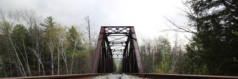 Eine Eisenbahn, die in den Abstand sich bewegt lizenzfreie stockbilder